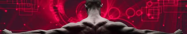 Program incepatori pentru crestere musculara